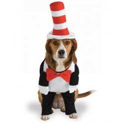 Fantasia para Cachorro Cat in The Hat